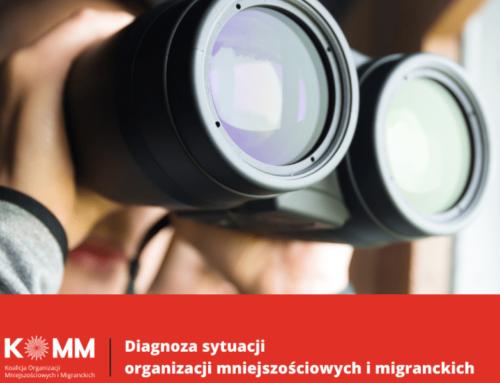 Diagnoza sytuacji organizacji mniejszościowych i migranckich